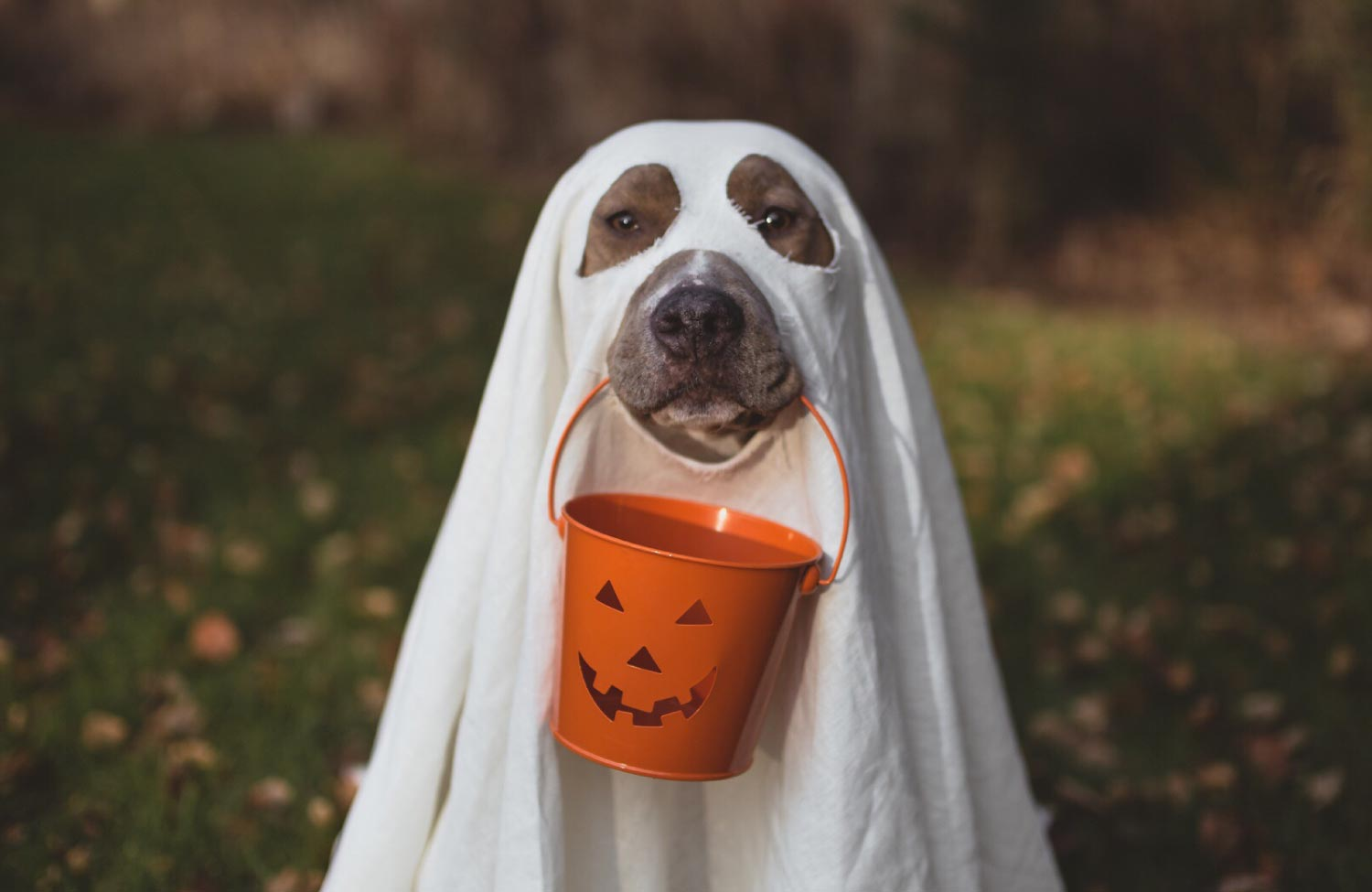 4 Reasons Why Healthcare Consumers are Ghosting You